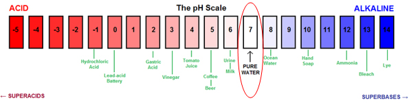 essay chemical reactions ph scale Chemical reactions 5 – acids and bases acid ph scale a range of 0-14 to chemical reactions search latest blog posts.