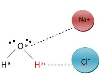 ion dipole